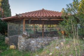 Image No.24-Maison de 3 chambres à vendre à Messinia