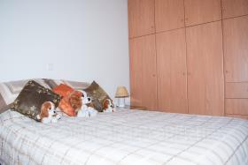 Image No.11-Maison de 2 chambres à vendre à Messinia