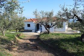 Image No.28-Bungalow de 4 chambres à vendre à Messinia