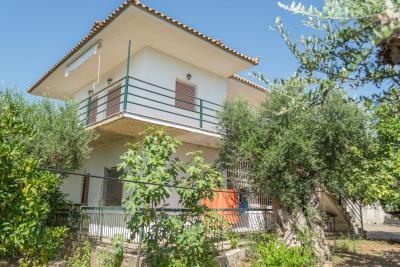 Lovely-250-sq-m--4-bed-2-bath-house--set-on-2000-sq-m--plot--2-km-from-Kyparissia--Excellent-selling-price-----901---16-