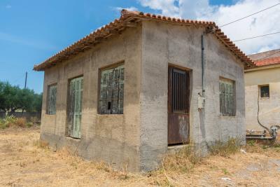 Real-Estate-948--16-