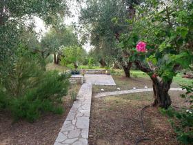 Image No.11-Villa de 4 chambres à vendre à Messinia
