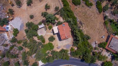 Real-Estate-943--1-