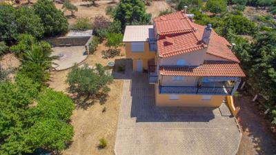 Real-Estate-943--3-