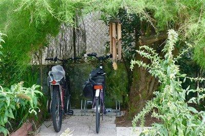 bike-cave-under-tree