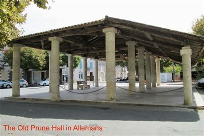 the-old-prune-hall