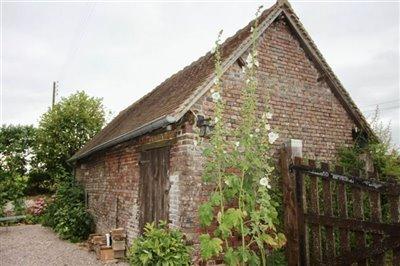 barn-with-hollyhocks