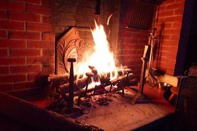 012a-log-fire-burning-in-the-grate-reduced-si
