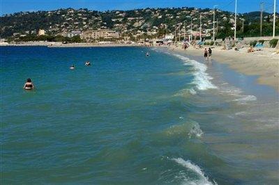 the-local-beach