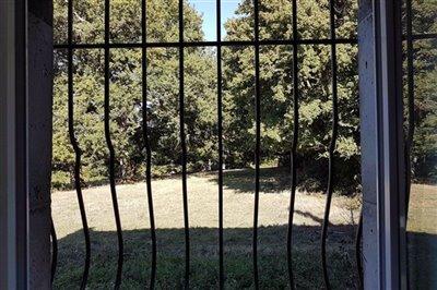 meadow-through-kitchen-window