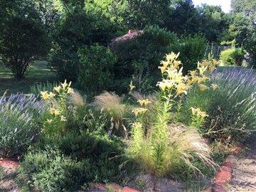 16-fpd-garden-flowers