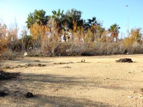Image No.0-Terrain à vendre à Almerimar