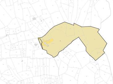 z-mappa-colorata