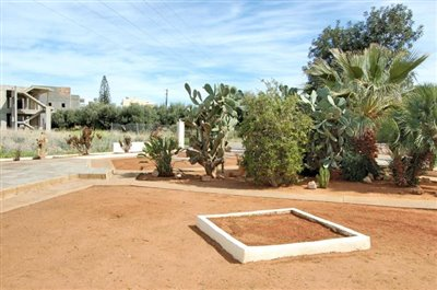 H-MAL201-House0with-garden-at-Malia11