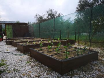 8-Kitchen-garden