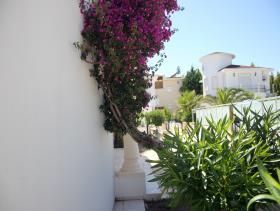 Image No.16-Villa / Détaché de 2 chambres à vendre à Belek