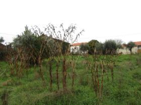 Image No.11-Chalet de 3 chambres à vendre à Pedrógão Grande