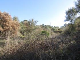 Image No.11-Terrain à vendre à Sardoal