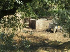 Image No.10-Propriété de pays de 2 chambres à vendre à Sertã