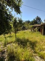 Image No.3-Propriété de pays à vendre à Cernache do Bonjardim