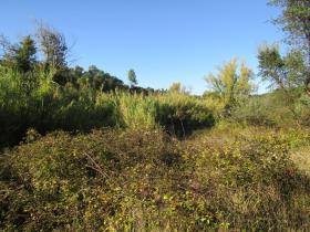 Image No.8-Terrain à vendre à Sardoal