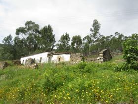 Image No.3-Chalet à vendre à Sardoal