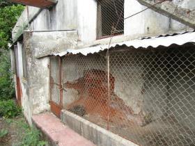 Image No.6-Maison de 4 chambres à vendre à Sardoal