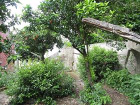 Image No.9-Maison de 4 chambres à vendre à Sardoal