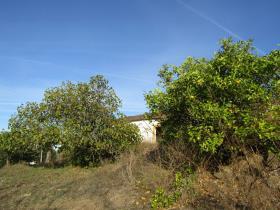 Image No.16-Chalet de 2 chambres à vendre à Sardoal
