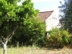 Image No.2-Propriété de pays de 8 chambres à vendre à Mação