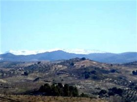 Image No.7-Terre à vendre à Arenas del Rey