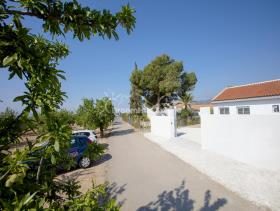 Image No.27-3 Bed Finca for sale