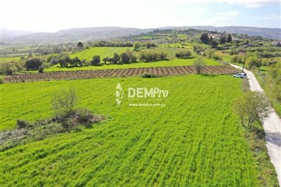 16959-agricultural-land-for-sale-in-polemiful