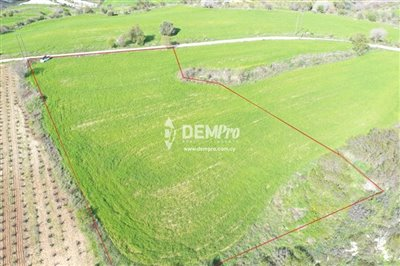 16960-agricultural-land-for-sale-in-polemiful