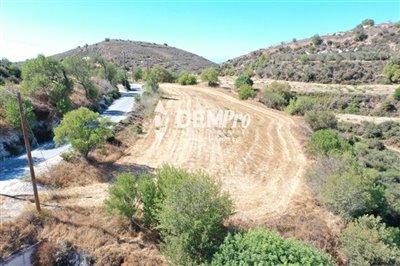 21910-residential-land-for-sale-in-tsadafull