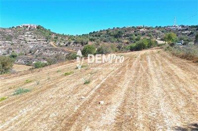 21914-residential-land-for-sale-in-tsadafull