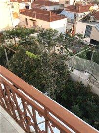 -462-backyard-garden