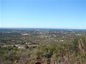 Image No.0-Terre à vendre à Santa Bárbara de Nexe