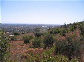 Image No.4-Terre à vendre à Santa Bárbara de Nexe