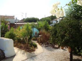 Image No.17-Maison de 2 chambres à vendre à Sellia