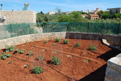 KH-1520-Sorrell-DSC_0012-vegetable-garden-from-gate-drive