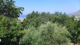 Image No.24-Maison de ville de 2 chambres à vendre à Praia a Mare