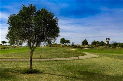 vistabella-golf-photos-14