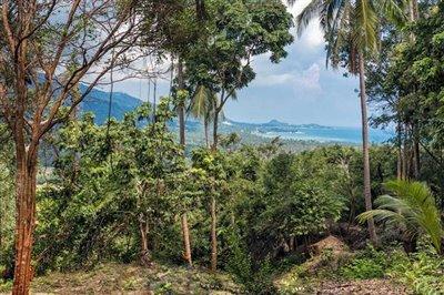 sea-view-land-at-santikhiri-samui-view-east