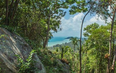 sea-view-land-at-santikhiri-samui