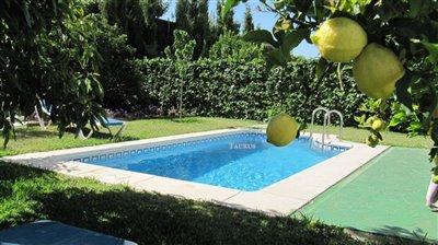 pool-terrace-b-4