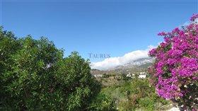 Image No.22-Villa de 3 chambres à vendre à Canillas de Albaida