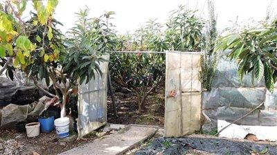plot-1a-entrance
