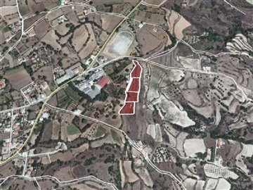 Agricultural Land For Sale  in  Polemi
