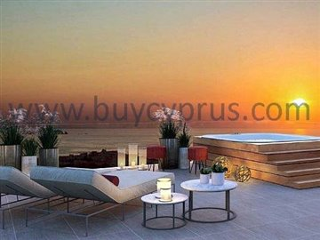 Penthouse Private Roof Terrace